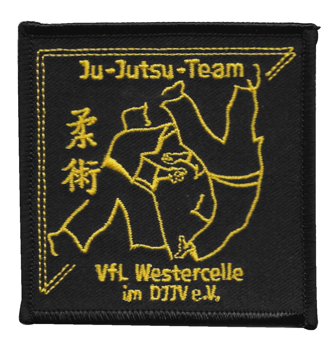 Vfl Westercelle Ju Jutsu Mehr Als Bodenständig